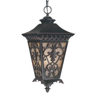 Savoy House Bientina Outdoor Hanging Lantern in Slate   5 7134 25