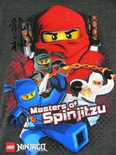 Lego Ninjago Mini Figures Masters of Spinjitzu Grey s s T Shirt Boys