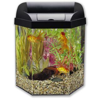Eclipse 5 Gallon Fish Tank Filter Eclipse Hexagon 5