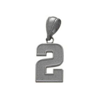 14 Karat White Gold Number 2 Pendant with 16 chain Jewelry