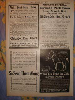 1916 Long Branch New Jersey Antique Horse Print RARE