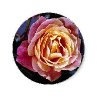 Flowers 122 round stickers