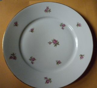 Hertel Jacob Porzellan Bavaria Germany Salad Plate