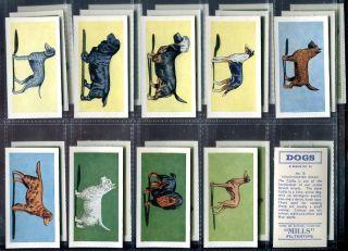 Tobacco Card Set Mills Dogs Various Pedigree Breed 1958