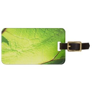 natural Green leaf leaves Trees Earth Beautiful D Tags For Bags