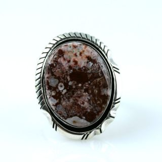 Native American Jewelry Wild Horse Nugget Ring 6 0