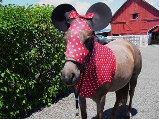 MOUSE HORSE COSTUME, EARS & TAIL BAG Horse Hood SLINKY TAIL BAG *LARGE