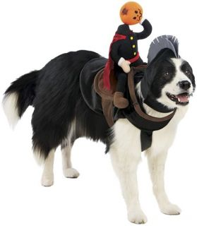 Headless Horseman Pet Rider Halloween Dog Costume Medium and Large