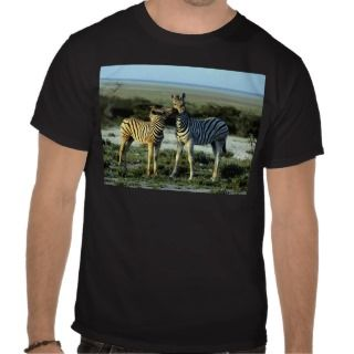 Zebra Kissing T Shirts