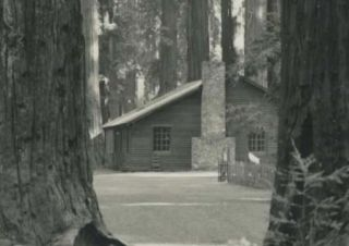 CA Humboldt State Park RPPC 1933 Lodge Cabin Store Redwood Hwy by