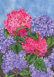 Bright Red Purple Blooming Hydrangeas Bush 0065 New Mini Flag