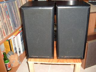 Infinity Speakers Model RS 325 Just Refoamed