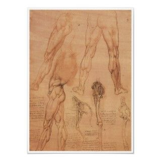 Surface Anatomy of the Lower Extremity, Da Vinci Posters