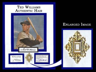 Ted Williams Authentic Hair Greatest Hitter of All Time