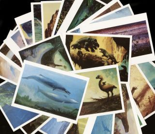 William Stout Set of 26 Postcards 1990 Dinosaurs Antarctic Reptiles Extinct