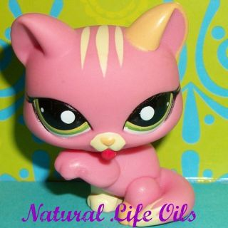 Littlest Pet Shop 1562 Paw Lickin Strawberry Pink Kitty Cat B169 LPS