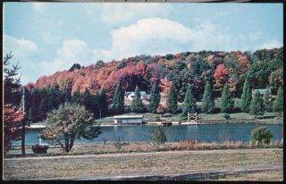 Horse Shoe Run WV Silver Lake Park Vintage West VA Postcard Old w