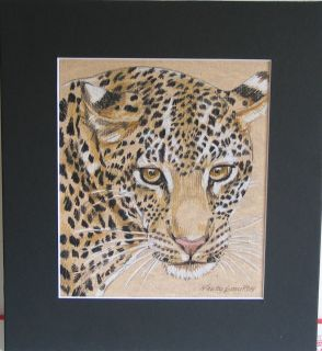 Colored Pencil Original 11x12 Leopard 2 by Gawron