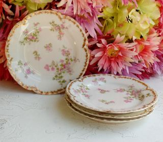Antique Haviland Limoges Porcelain Dessert Plates Pink Floral Gold