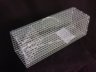 Single Door Small Animal Live Trap