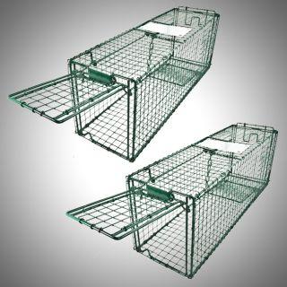 Live Animal Trap Skunk Racoon Cat 31 x9 x11 Cage Rabbit Box Wildlife