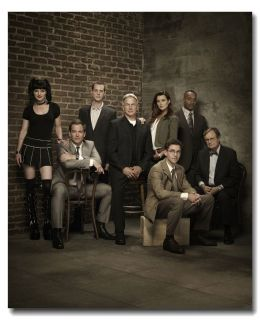 NCIS Poster 29 Mark Harmon Michael Leroy Anthony Ziva Hot TV Shows