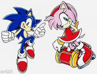 11 SONIC THE HEDGEHOG AMY ROSE WALL SAFE STICKER CHARACTER