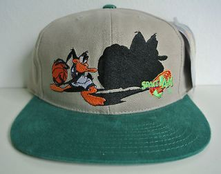 DS SPACE JAM SNAPBACK HAT by AMERICAN NEEDLE comic toons daffy kings