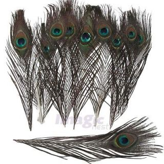 Real Natural Peacock Feathers about 10 12 Inches 200pcs 100pcs 50pcs