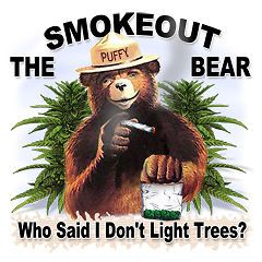 black bear light