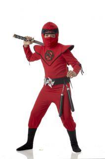 Special Ops Ninja Master Dragon Child Warrior Costume