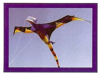 3D Black Wing Pterodactyl Single Line Kite by Carsten Domann. 45867