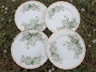 Crown Daisy Bouquet 7 1/2 Salad Plates Hand Paint Gold Trim * Xlnt