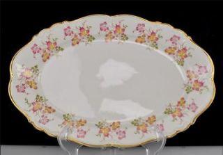 Edelstein Bavaria Maria Theresia 15 Oval Serving Platter Ophelia