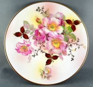 Schumann Arzberg Germany Wild Rose Salad Plate