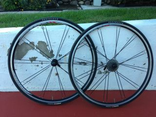 Bontrager Race Wheels w Tires and Tubes