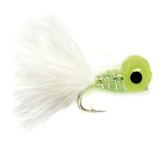Big eyed Panfish Bug, Green