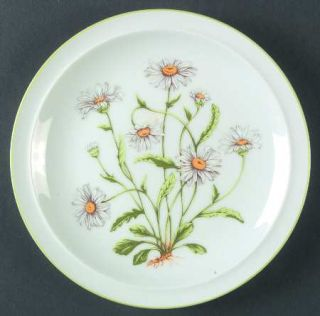 Royal Domino Wild Daisy Salad Plate, Fine China Dinnerware   White Daises,Green