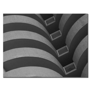 Trademark Global Inc Curves Black and White Canvas Art by Patty Tuggle   PT073